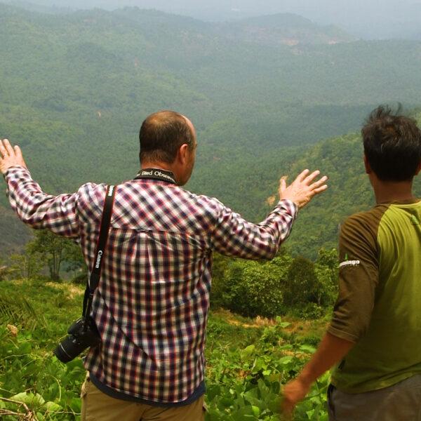 PHILIP LOOKING OUT TO BRAZILIAN RAINFOREST DESTRUCTION